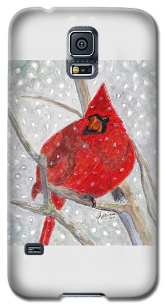 A Cardinal Winter Galaxy S5 Case by Angela Davies