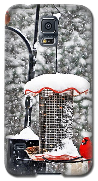 A Cardinal Winter Galaxy S5 Case by Lydia Holly