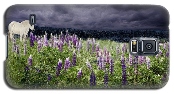 A Childs Dream Among Lupine Galaxy S5 Case