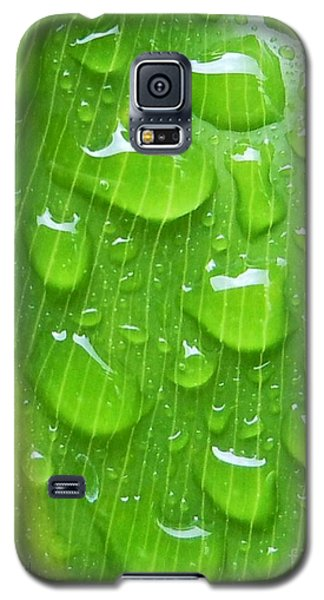 Galaxy S5 Case featuring the photograph A Cleansing Morning Rain by Robert ONeil