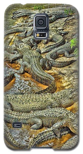 A Congregation Of Alligators Galaxy S5 Case by Rona Schwarz