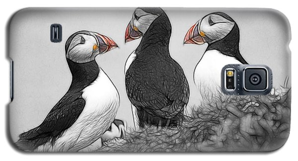 A Contemplation Of Puffins Galaxy S5 Case