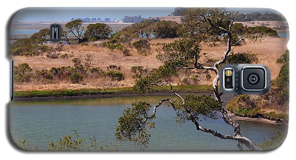 A Cove In Late Summer At Elkhorn Slough Galaxy S5 Case
