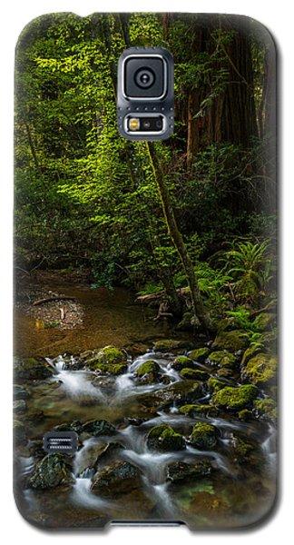 A Creek Among Giants Galaxy S5 Case