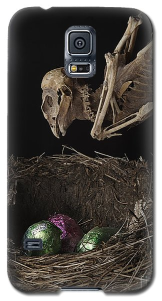 A Dead Bird Flies Into Its Nest Only To Find Chocolate Eggs Galaxy S5 Case