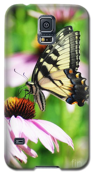 A Deamy Recollection Of A Swallowtail Galaxy S5 Case