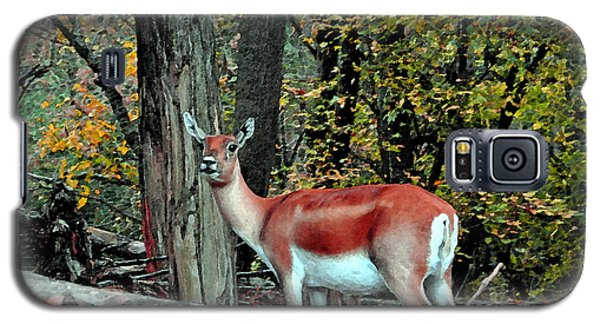 A Deer Look Galaxy S5 Case by Lydia Holly