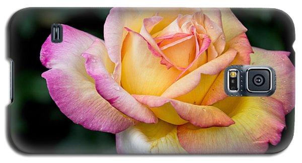 A Delicate Rose Galaxy S5 Case