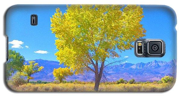 A Desert Autumn Galaxy S5 Case