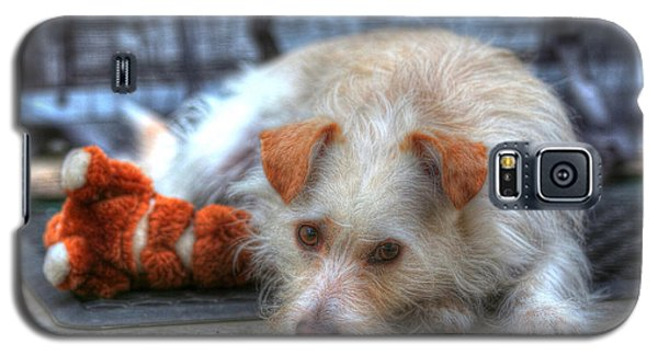 Galaxy S5 Case featuring the photograph A Dog And His Best Friend by Kevin Ashley