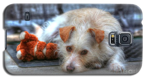 A Dog And His Best Friend Galaxy S5 Case by Kevin Ashley