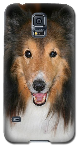 A Dog Named Beau Galaxy S5 Case