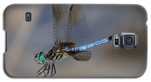 A Dragonfly Iv Galaxy S5 Case
