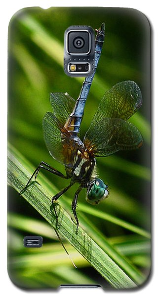 Galaxy S5 Case featuring the photograph A Dragonfly by Raymond Salani III