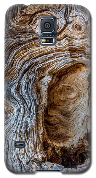 Galaxy S5 Case featuring the photograph A Face In The Wood by Beverly Parks