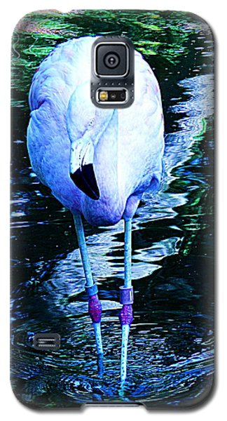 Galaxy S5 Case featuring the photograph A Flamingo On A Watery Stroll. by John King