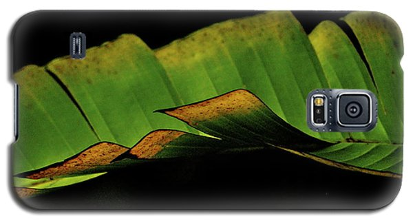 A Floating Heliconia Leaf Galaxy S5 Case