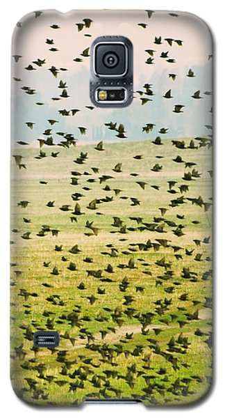 A Flock Of Freedom Galaxy S5 Case