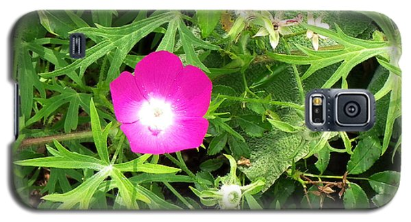 Galaxy S5 Case featuring the photograph A Flower Amongst The Green... by Tim Fillingim