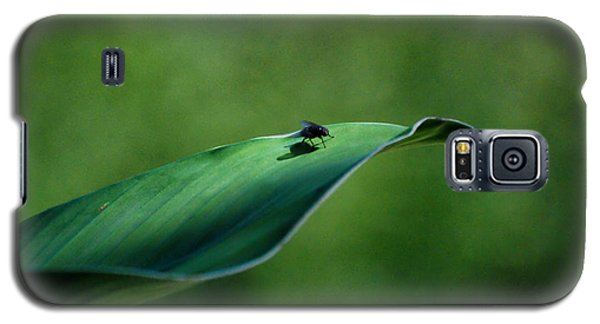 Galaxy S5 Case featuring the photograph A Fly And His Shadow by Thomas Woolworth
