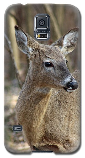 A Forest Beauty  Galaxy S5 Case