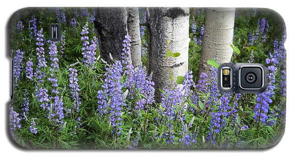 Galaxy S5 Case featuring the photograph A Forest Of Blue by The Forests Edge Photography - Diane Sandoval