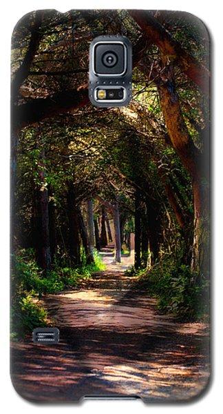 A Forest Path -dungeness Spit - Sequim Washington Galaxy S5 Case