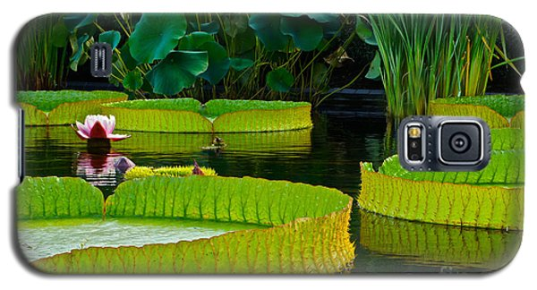A Garden In Gentle Waters Galaxy S5 Case by Byron Varvarigos