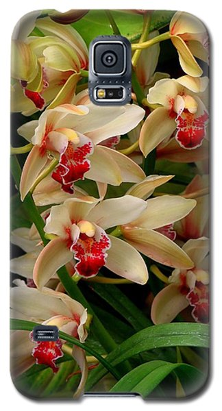 Galaxy S5 Case featuring the photograph A Gathering by Rodney Lee Williams