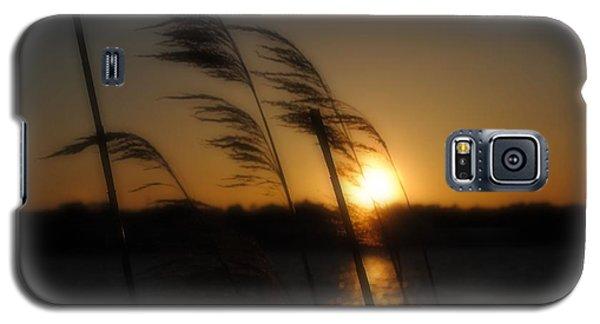 A Golden Evening Galaxy S5 Case
