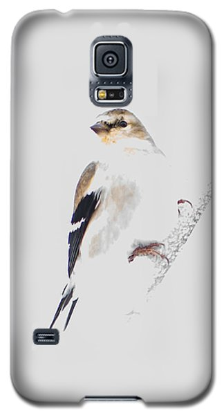 A Gray Winter's Day-2 Galaxy S5 Case