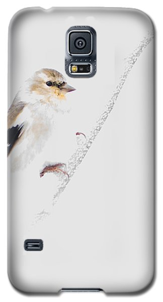 A Gray Winter's Day Galaxy S5 Case