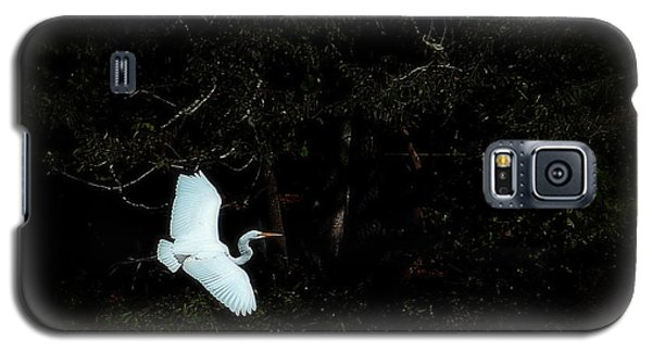 Galaxy S5 Case featuring the photograph A Great White Heron Above The Water by Lena Wilhite