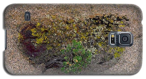 A Hidden Wall Flower Galaxy S5 Case
