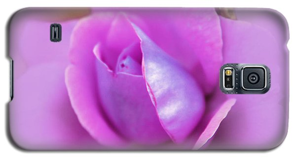 A Hint Of Lavender Rose Galaxy S5 Case by Judy Palkimas