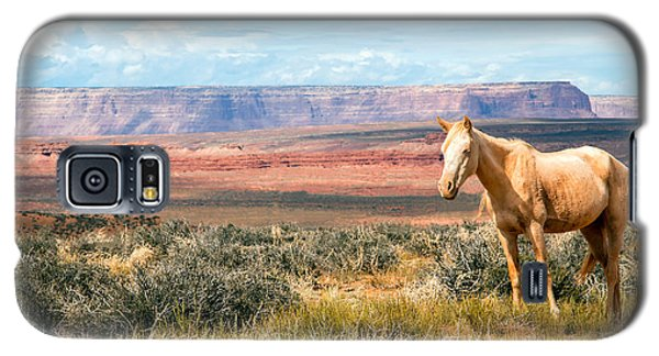 A Horse With No Name Galaxy S5 Case