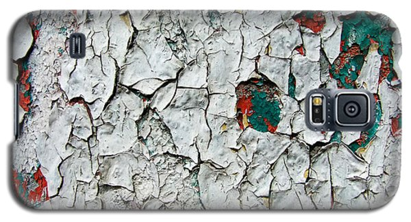 A Legacy In Peeling Paint Galaxy S5 Case by Robert Knight