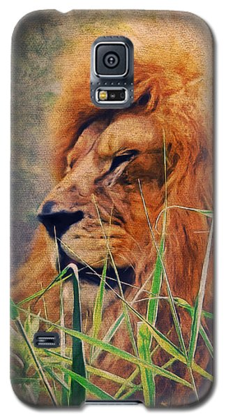 A Lion Portrait Galaxy S5 Case