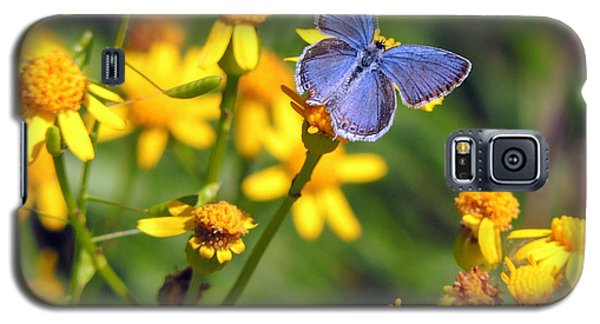 A Little Blue Galaxy S5 Case