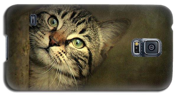 A Little Shy Galaxy S5 Case