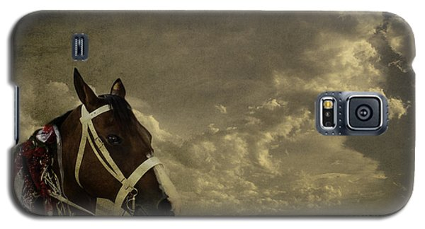 A Lovely Horse Galaxy S5 Case