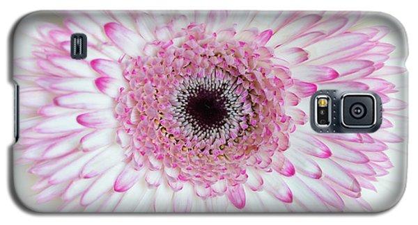A Million Petals Galaxy S5 Case by Ana V Ramirez