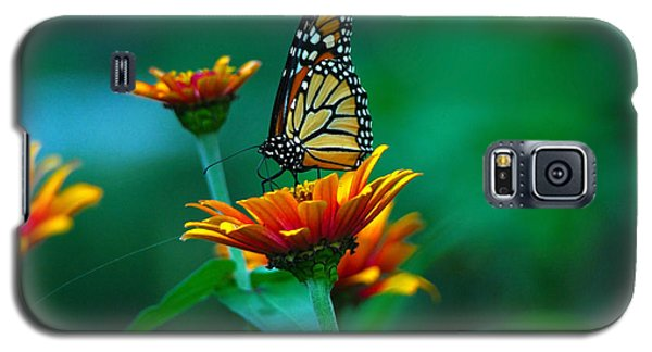 Galaxy S5 Case featuring the photograph A Monarch by Raymond Salani III