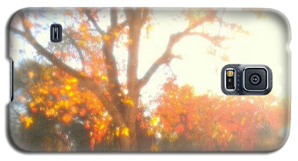 Light Galaxy S5 Case - A Morning Dream by CML Brown