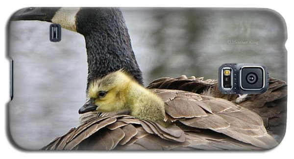 Galaxy S5 Case featuring the photograph A Mother's Love by Heather King