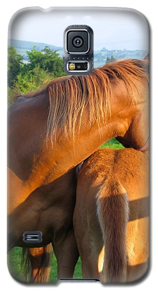 A Mother's Love Galaxy S5 Case by Suzanne Oesterling