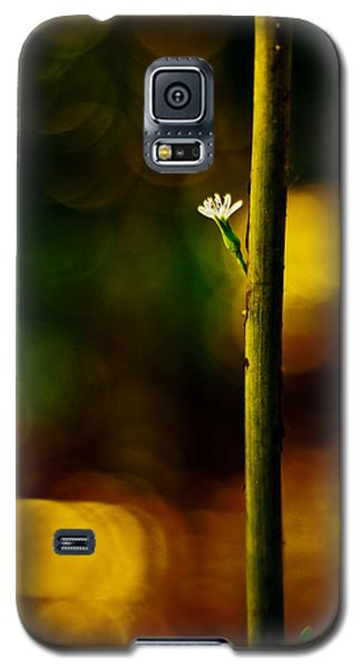 A New Beginning Galaxy S5 Case