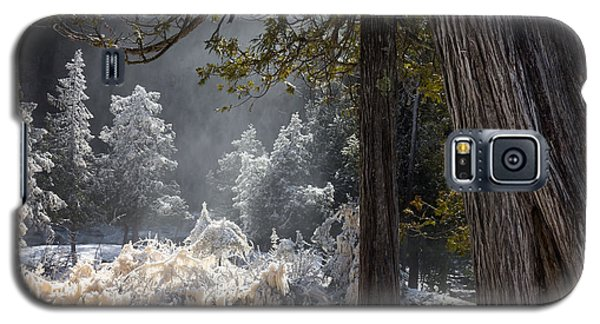 A North Woods Fairy Tale Galaxy S5 Case