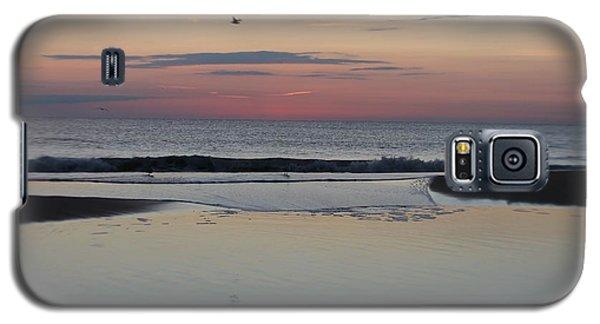 A One Seagull Sunrise Galaxy S5 Case by Robert Banach