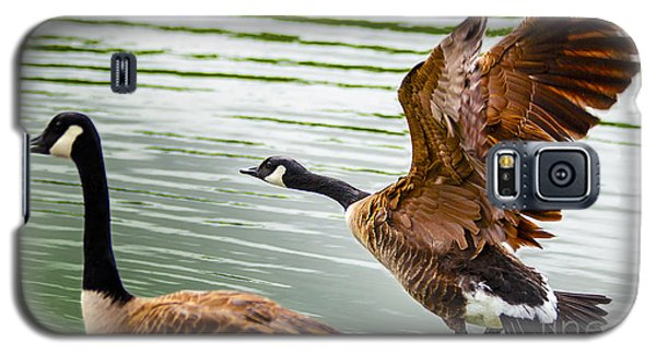Galaxy S5 Case featuring the photograph A Pair Of Canada Geese Landing On Rockland Lake by Jerry Cowart